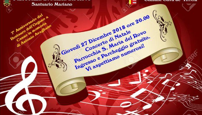 Concerto di natale18