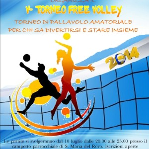 free volley 2014